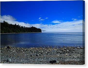 Mist On The Sea At Jordan River Canvas Print by Louise Heusinkveld
