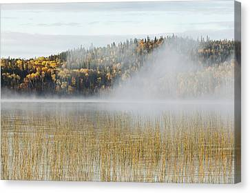 Mist Over A Lake In Autumn Ontario Canvas Print by Susan Dykstra