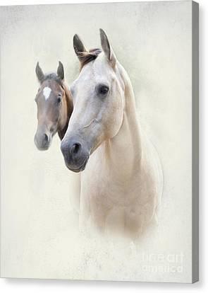 Misty Canvas Print by Betty LaRue