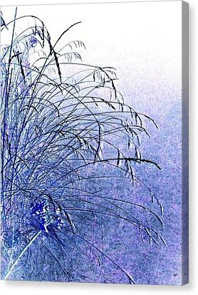 Misty Blue Canvas Print by Will Borden