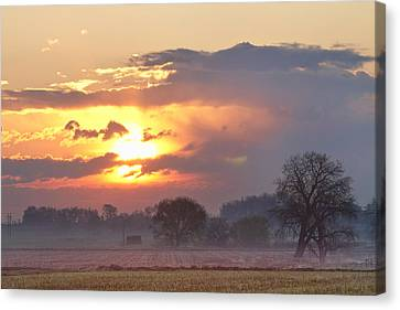 Misty Country Sunrise  Canvas Print by James BO  Insogna