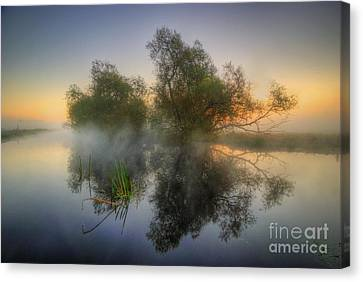 Misty Dawn 2.0 Canvas Print by Yhun Suarez