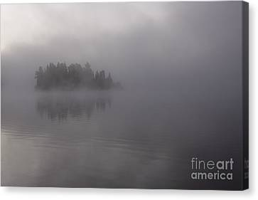 Misty Evergreen Island Canvas Print by Chris Hill