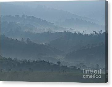Misty Hills Of Chiriqui Canvas Print by Heiko Koehrer-Wagner