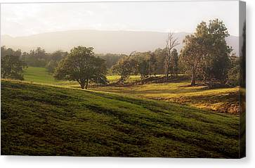 Canvas Print featuring the photograph Misty Maui Morning by Trever Miller
