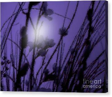 Misty Moonlight Marsh Canvas Print by Roxy Riou