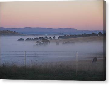 Misty Morning In The Country 1 Canvas Print