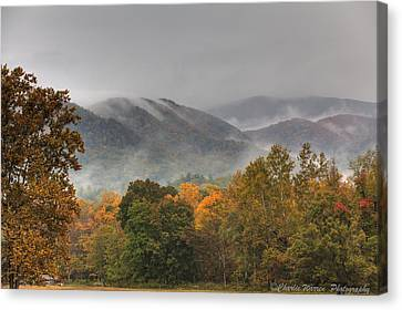 Misty Morning Iv Canvas Print by Charles Warren