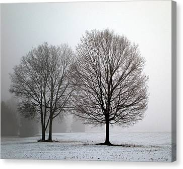 Canvas Print featuring the photograph Misty Morning by Penny Hunt
