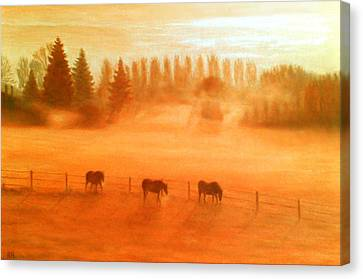 Misty Morning Canvas Print by Ronald Haber