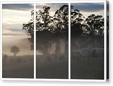 Misty Morning Triptych Canvas Print