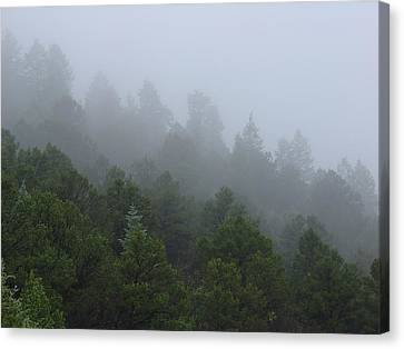 Canvas Print featuring the photograph Misty Mountain Morning by Charles and Melisa Morrison