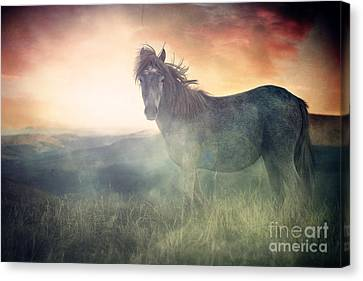 Blending Canvas Print - Misty Sunset by Lee-Anne Rafferty-Evans