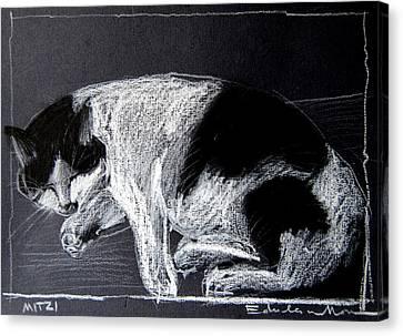 Mitzy Canvas Print by Mona Edulesco
