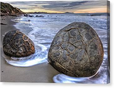 Moeraki Boulders At Dawn On Moeraki Canvas Print by Colin Monteath