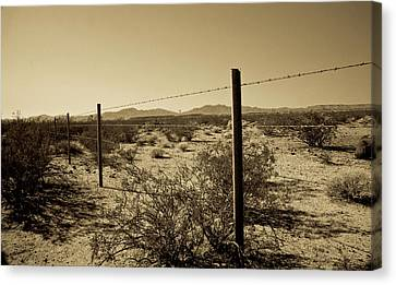 The Mojave Desert   Canvas Print by Gilbert Artiaga