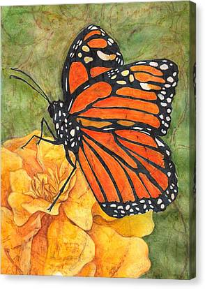 Monarch On Marigold Canvas Print by Sara Bell