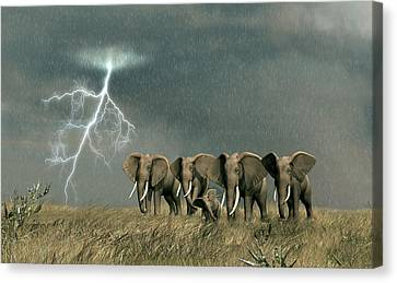 Monsoon On The Serengeti Canvas Print by Walter Colvin