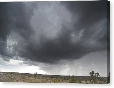Monsoon Storm Clouds Canvas Print by David Edwards