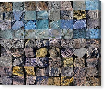 Montage Blue Beach Fossil Specimens Canvas Print by William OBrien