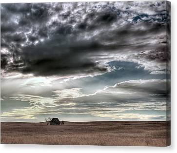 Montana Grasslands Canvas Print by Leland D Howard