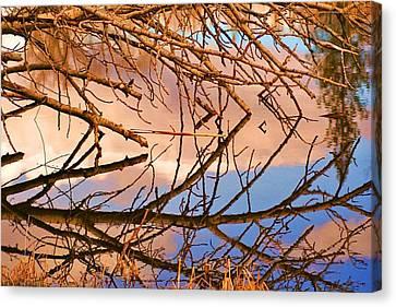Montana Peace Pond IIi Canvas Print by William Kelvie