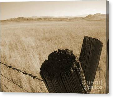 Montana Vista Canvas Print by Bruce Patrick Smith