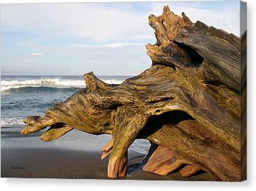 Jaco Canvas Print - Monument At Playa Hermosa South Of Jaco Costa Rica by Michelle Wiarda-Constantine