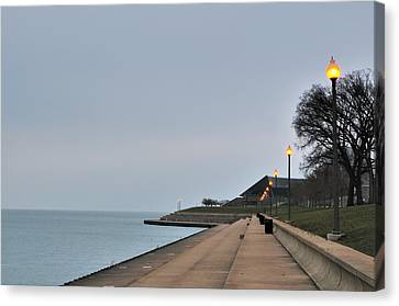 Moody And Lonely Lakefront Canvas Print by Bruce Leighty