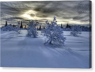 Moody Snow Scene Canvas Print by Michele Cornelius