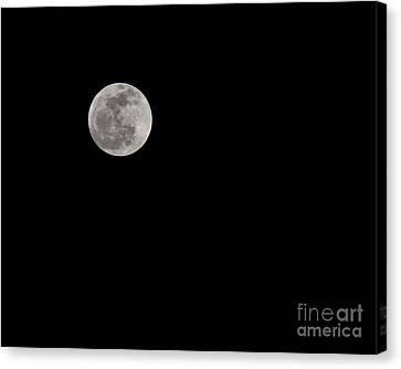 Moon After Yule Canvas Print