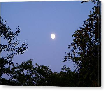 Moon Canvas Print by Aimee L Maher Photography and Art Visit ALMGallerydotcom
