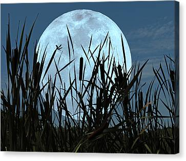 Moon And Marsh Canvas Print by Deborah Smith