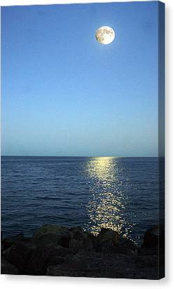 Moon And Water Canvas Print