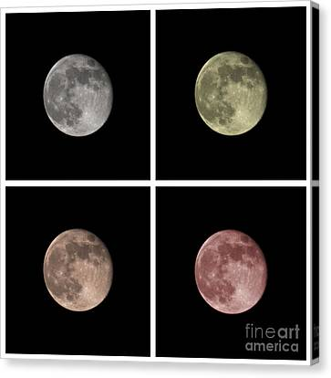 Orb Canvas Print - Moon by Blink Images