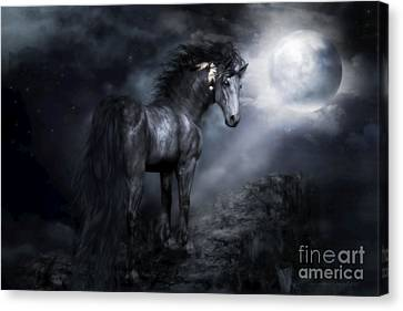 Moon Shadow Canvas Print by Shanina Conway