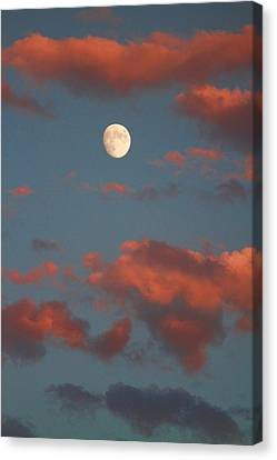 On Line Art Galleries Canvas Print - Moon Sunset Vertical Image by James BO  Insogna