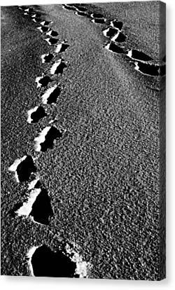 Moon Walk Canvas Print by Empty Wall