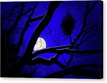 Canvas Print featuring the photograph Moon Wood  by Richard Piper