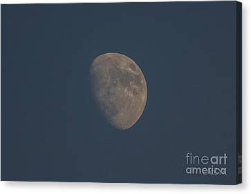 Moon2 Canvas Print by Cazyk Photography