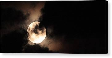 Moondance Canvas Print by Rachel Hames