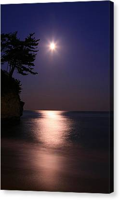 Moonlight (cormorant Point) Canvas Print by Copyright Crezalyn Nerona Uratsuji