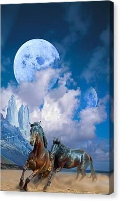Moonlight Horses Canvas Print by Pavlos Vlachos