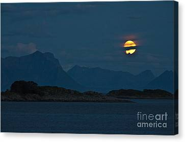 Moonlight Series - 2 Canvas Print by Heiko Koehrer-Wagner