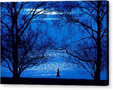 Canvas Print featuring the photograph Moonlight Stroll by Mike Flynn