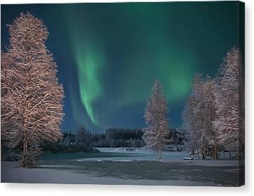 Moonlit Aurora Canvas Print