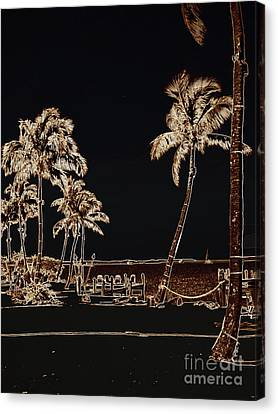 Moonlit Palms Canvas Print by Rene Triay Photography