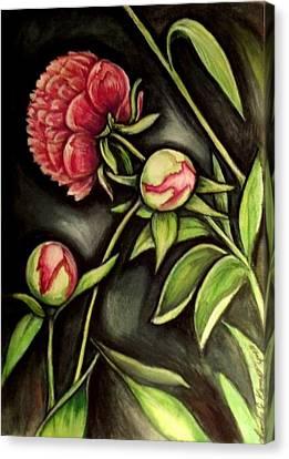 Moonlit Peonies Canvas Print by Linda Nielsen