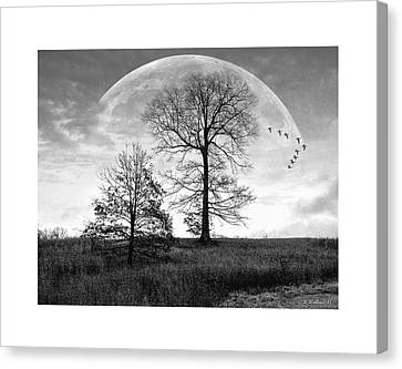 Moonlit Silhouette Canvas Print by Brian Wallace
