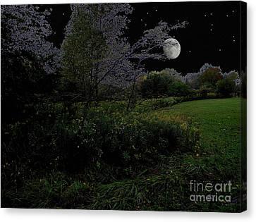 Moonrise In Flossmoor Forest Canvas Print by Cedric Hampton